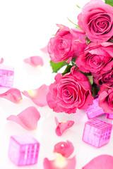 Roses - Rosen