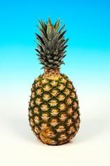Whole pineapple © Arena Photo UK