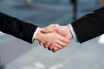 Business handshake, deal finalized