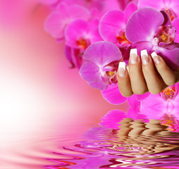 Wall Mural - French Nails - pink background