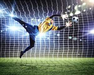 Photo sur Plexiglas Le football Goalkeeper catches the ball