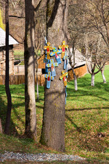 Colored litlle crosses on oak tree