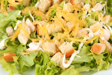 Caesar salad on white plate, close up