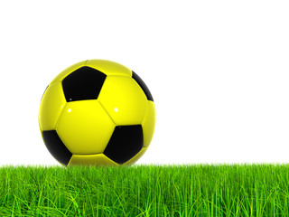 Conceptual soccer ball in grass