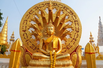 The buddha statue with naga background
