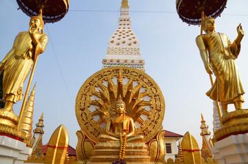 Buddha with naga background