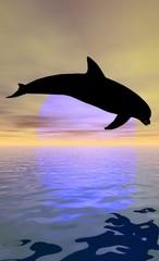 Photo sur Aluminium Dauphins dauphin au soleil couchant
