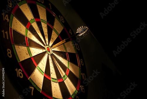 Wall mural darts arrows