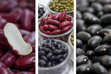 dried beans collection