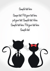 Black cats card