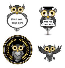 owl set