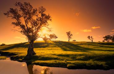 Fototapete - Sunset Creek