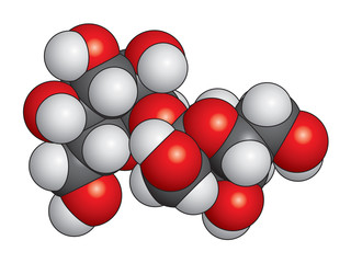 Sucrose (sugar) molecule space fill model - C12H22O11