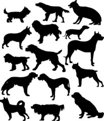 fifteen dog silhouettes isolated on white