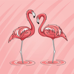 Two pink flamingos in vector