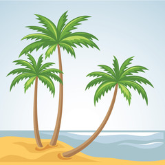 Three palm trees in vector