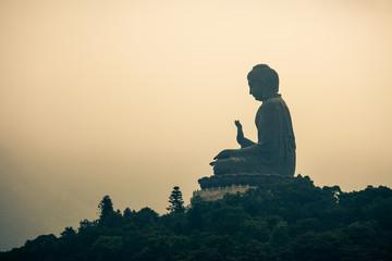 Foto op Aluminium Hong-Kong Tian Tan Buddha on Lantau Island