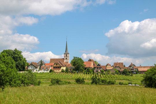 Village with vineyards
