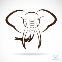 Vector image of an elephant head , illustration - vector