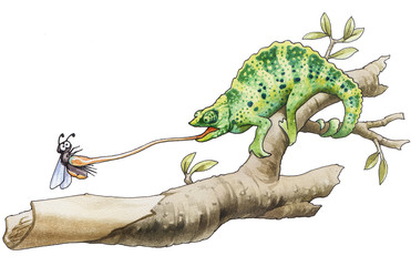 The chameleon has caught an insect for a breakfast.