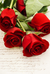 red rose flowers and old love letters