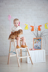 Little boy sitting on ladder with a rabbit