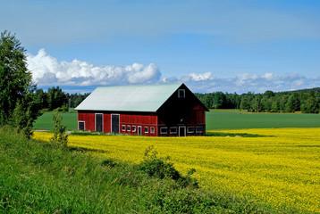 Farben  von  Schweden