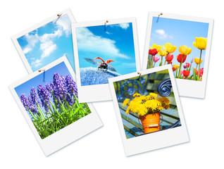 Frühlingsbilder, endlich Frühling!, Sofortbild, isoliert