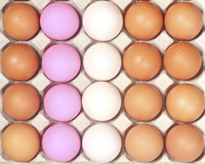 Lot of colorful eggs in a row on a tray