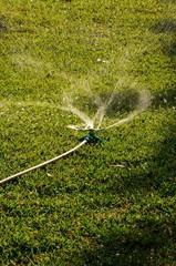 Rotating garden sprinkler on lawn © Arena Photo UK