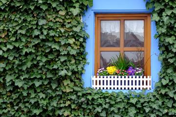 Blumendekoration am Fenster