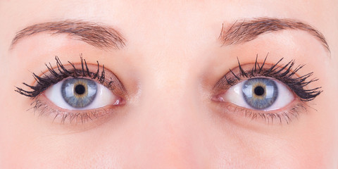 Beautiful close up of a caucasian women's eyes - Caucasian peopl