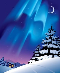 Winter landscape with the northern lights