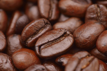 Coffee beans closeup