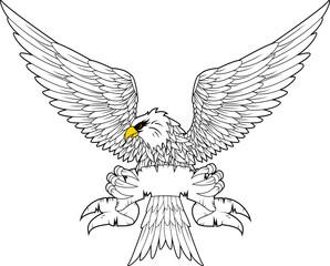 Spread winged eagle insignia