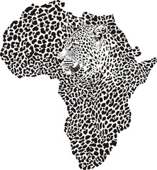 Leopard skin and head in silhouette Africa