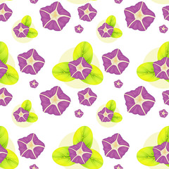 A background with violet flowers