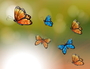 Zelfklevend Fotobehang Vlinders A special paper with orange and blue butterflies