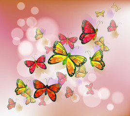 Fotorolgordijn Vlinders A stationery with a group of butterflies
