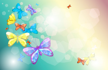 Printed kitchen splashbacks Butterflies Colorful butterflies in a special paper