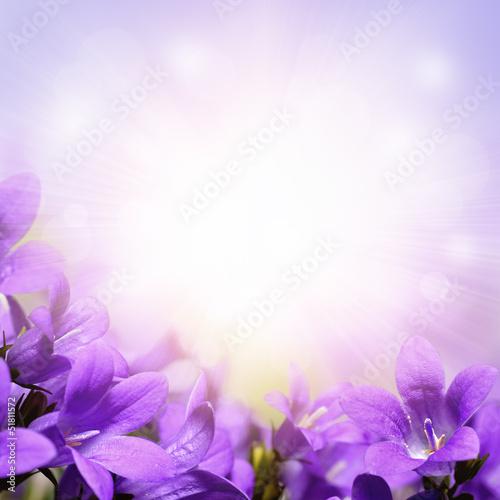 "Lavender Background Wedding: ""Campanula Spring Flowers Design Border Background"" Stock"