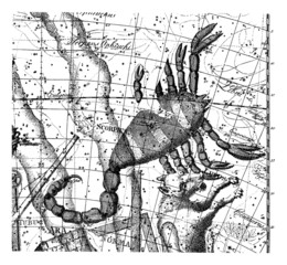 Astrology/Astronomy - Sky Map : Scorpion
