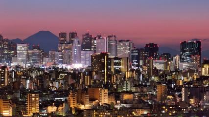 Staande foto Tokyo Tokyo Skyline and Fuji Mountain