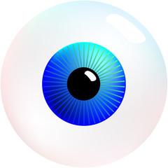 Eyeball (Augapfel)