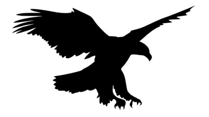 Adler auf Jagd