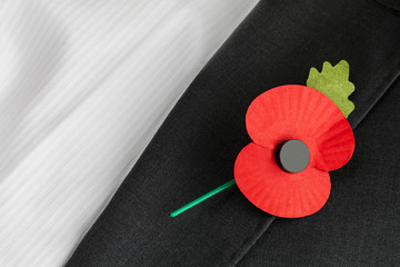 Poppy Appeal, Remembrance Day - poppy on jacket lapel.