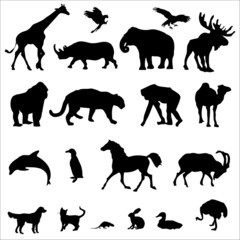 20 Animal Black Vector Illustration Silhouettes