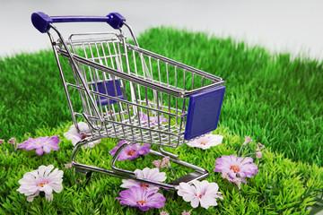 Einkaufswagen im Grünen