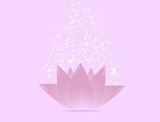 Fiore di loto ninfea