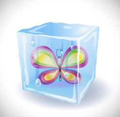 Ice cube with butterfly